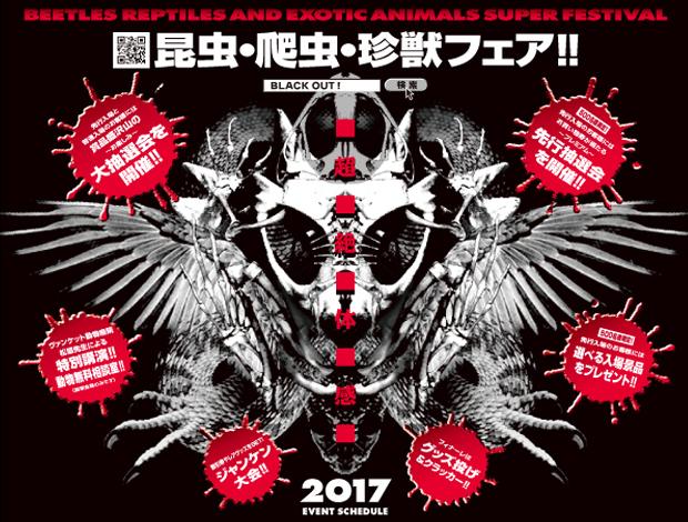 昆虫・爬虫・珍獣フェア!!《BLACK OUT 2017!》